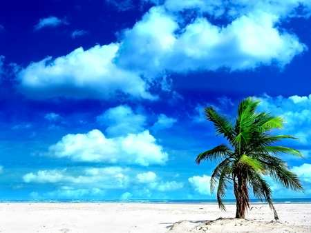 Holiday-wallpaper-Beach-Holiday-Wallpaper